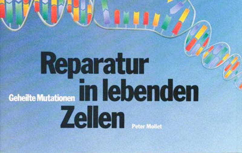 Reparatur in lebenden Zellen - Geheilte Mutation